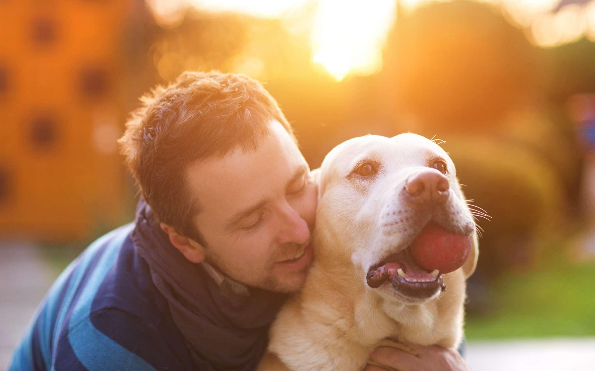 Pourquoi assurer mon chien ou mon chat bulle bleue - Chat ou chien ...